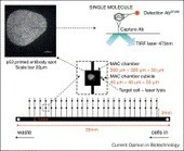 Quantitative single cell and single molecule proteomics for clinical studies | High Content Screening | Scoop.it