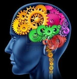 Eight Habits that Improve Cognitive Function | Cultivating Creativity | Scoop.it