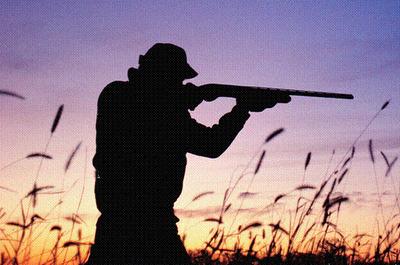 Armeria en Toledo - Armeria Online - Articulos de caza y tiro - Armeria Lancha S.L.   Armerialancha   Scoop.it