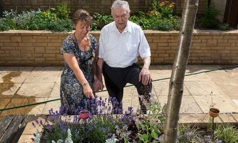 How gardening is helping people with dementia   Life After 50: The Four Frontiers   Scoop.it