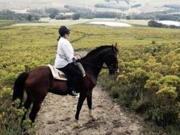 Arabella will put you in the saddle - Independent Online | BIANCA BOUCHARD | Scoop.it