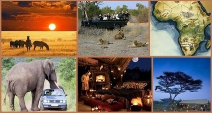 Choose Affordable African Group Safari Packages   Safaris in India & Africa   Scoop.it