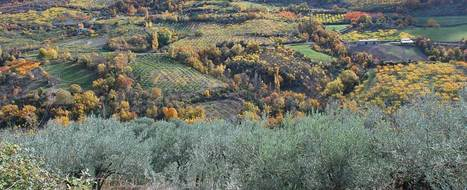 Une étude-action dédiée aux tiers-lieux sur le territoire des Baronnies provençales | Innovation dans les parcs naturels régionaux | Scoop.it