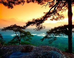 Check this out Breathtaking views of Phu Kradueng National Park in Loei | Beautiful Landscapes in Thailand | Scoop.it