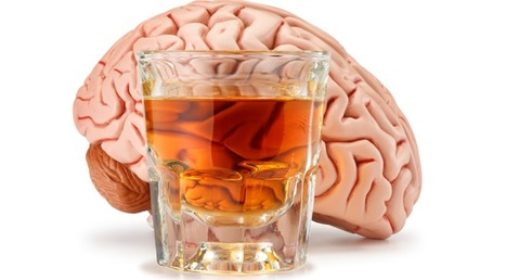 What Alcohol Really Does to Your Brain - Forbes | Freelance Filmmaker | Scoop.it