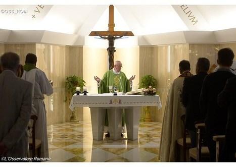 Ranná homília pápeža: Návod na každodennú cestu ku svätosti | Správy Výveska | Scoop.it