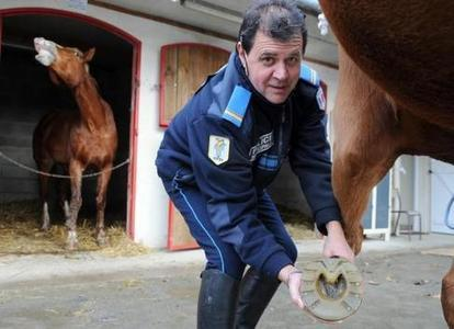 Brigade équestre : des chevaux bien dans leurs fers - La nouvelle republique | Equidés | Scoop.it