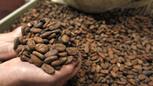 L'agroalimentaire joue la carte des bienfaits santé | beauté & santé | Scoop.it
