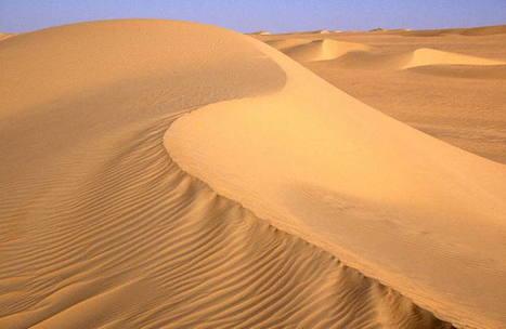 Réserves naturelles de l'Aïr et du Ténéré - UNESCO World Heritage Centre | Les déserts dans le monde | Scoop.it