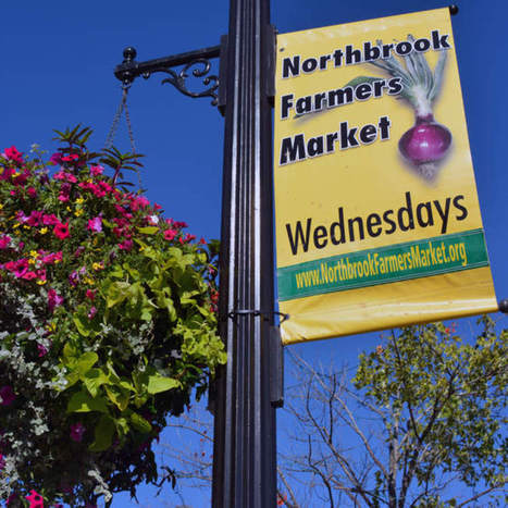 Northbrook Farmers Market to offer double the value for SNAP benefits - Northbrook Star | Local Food Systems and Small Farms | Scoop.it