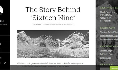 Sixteen Nine Theme From StudioPress | SEO Labs | Scoop.it