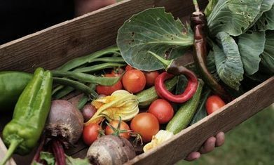 Beyond farmers markets: can food entrepreneurs boost buying local? | Local Food | Scoop.it