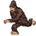 BiopSci : Des bigfoots, des mouches et des bazookas   Les explications scientifiques des mythes   Scoop.it