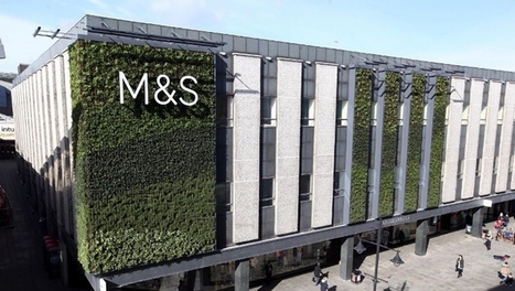 Labour rights the 'next big challenge' for corporates, says M&S | Sustainable Procurement News | Scoop.it