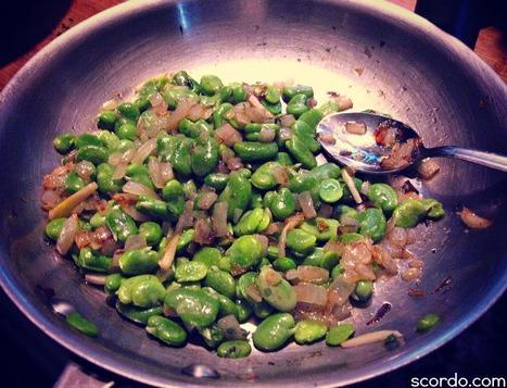 Sauteed Fava Beans | Brookline pizza,Boston Pizza | Scoop.it