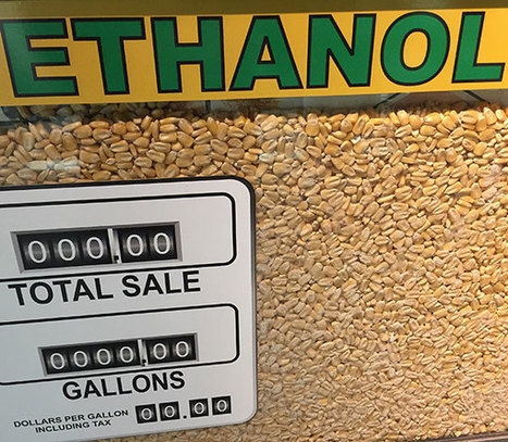 Whatever Happened to Advanced Biofuels? | Sustain Our Earth | Scoop.it