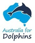 #Victory! #WAZA suspends dolphin hunting aquariums. | Rescue our Ocean's & it's species from Man's Pollution! | Scoop.it