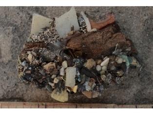 New type of rock: Plastiglomerate   Geology   Scoop.it