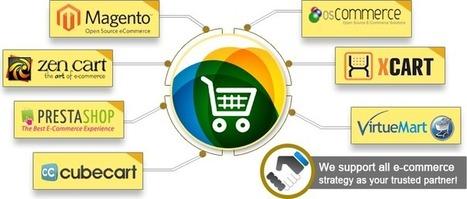 Web Solutions,Web development,website design,ecommerce - Online Reservation System | Provab-Technosoft | Scoop.it