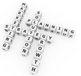 Planned out web strategy with a clear goal and return on investment. | SEO Gold Coast | Scoop.it