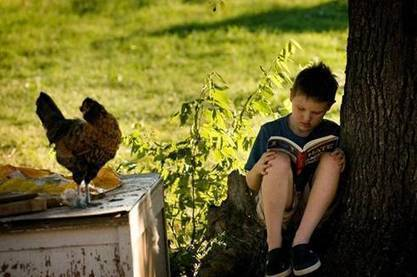 WELCOME TO THE NATURAL LIBRARY: The Essential Role of Libraries in Creating Nature-Rich Communities | Children & Nature Network | innovative libraries | Scoop.it