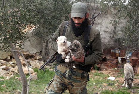 Man's best friend: Soldiers with dogs in war zones - | Photo1 | India Today | | The Dog Connection TV | Scoop.it