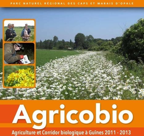 Agricobio : expérimenter la biodiversité en agriculture - Campagnes et Environnement | Biodiversité ordinaire et fonctionnelle en agriculture | Scoop.it