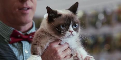 Week's Best Trailers: The Next Hobbit and Aubrey Plaza as Grumpy Cat - Wired   'The Hobbit' Film   Scoop.it