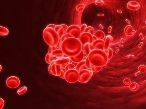 Crean un gel que detiene las hemorragias al instante | Ingeniería Biomédica | Scoop.it
