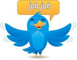 Etude des Comptes Twitter Carrières | Construire sa marque employeur | Scoop.it