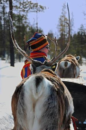 Finland's Sami minority: new cultural centre but no land rights | Finland | Scoop.it