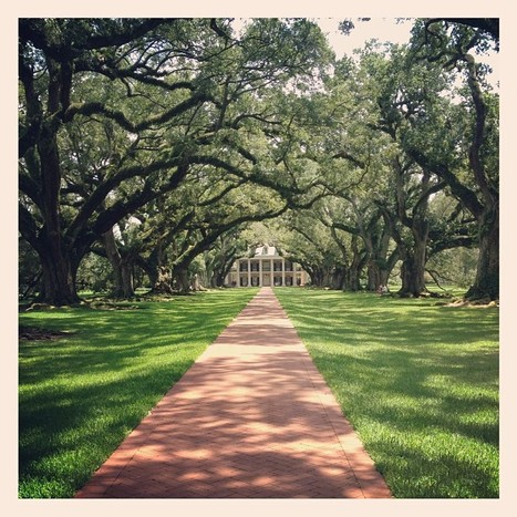 FindMimi! | Oak Alley Plantation: Things to see! | Scoop.it