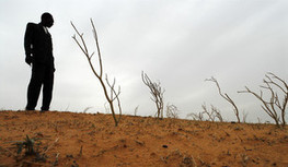 The Economics of Land Degradation | ELD at a glance | Scoop.it