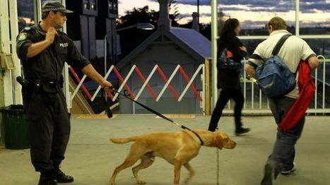 Fewer police sniffer dog searches but most still don't find drugs (NSW) | Alcohol & other drug issues in the media | Scoop.it