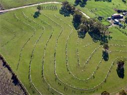Regenerative Agriculture UK | Cultibotics | Scoop.it