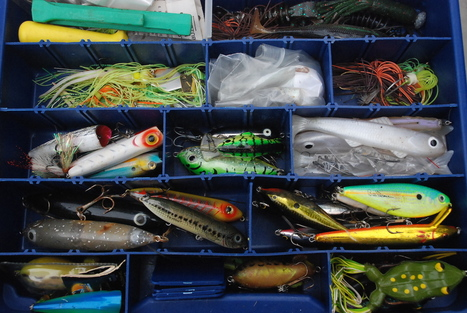 How Do Lures Visually Appeal to Fish? | Catch the Best of Fishing Fun | Scoop.it