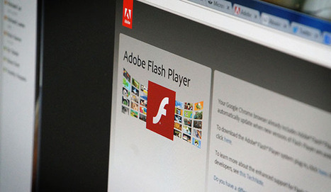 Google, Microsoft and Instagram rush to fix Flash flaw that could steal your data | Daily Magazine