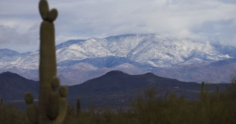 Winter is coming, and it's going to get cold in Phoenix   CALS in the News   Scoop.it