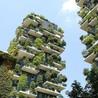 Sustainable Habitat