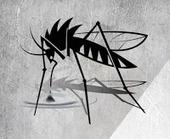 प्राकृतिक उपचार: डेंगू से बचाव के घरेलू उपचार | Herbs and Health | Scoop.it
