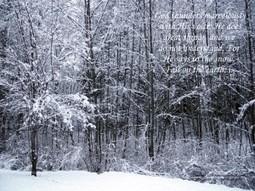 Snow Falling Wallpaper | coolwallpapers | Scoop.it