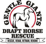 Gentle Giants Draft Horse Rescue: A Matter of Perspective? | Animals R Us | Scoop.it