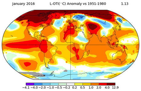 Last Month Was the Hottest January on Record. By a Lot. | The Zero Emission Alternative | Scoop.it