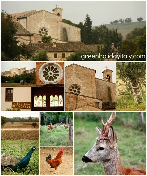 Le Marche Italy: Deer, Ancient Woods and Gregorian Chant | Le Marche another Italy | Scoop.it