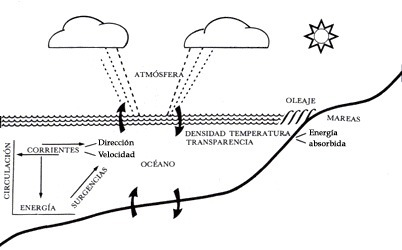 Oceanografía física   Dinámica Oceánica   Scoop.it