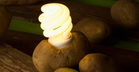 Use A Potato To Keep Your Room Lit For Over A Month | IELTS, ESP, EAP and CALL | Scoop.it
