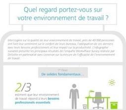 [Infographie] Quel regard portez-vous sur votre environnement de travail ? | social media, public policy, digital strategy | Scoop.it