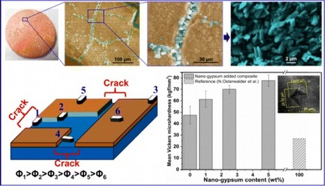 Direct and Facile Room-Temperature Synthesis of Nanocrystalline Gypsum | Mineralogy, Geochemistry, Mineral Surfaces & Nanogeoscience | Scoop.it