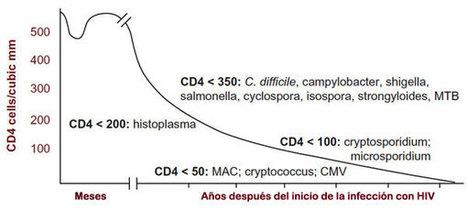 VIRUS DE LA INMUNODEFICIENCIA HUMANA (VIH) - SIDA - Recursos en Virología - Departamento de Microbiología y Parasitología - UNAM | Inmunodeficiencia secundaria | Scoop.it
