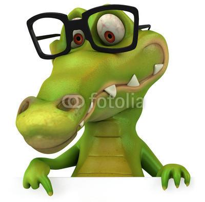 Saisie d'un caïman à lunettes dans une maison | Mais n'importe quoi ! | Scoop.it